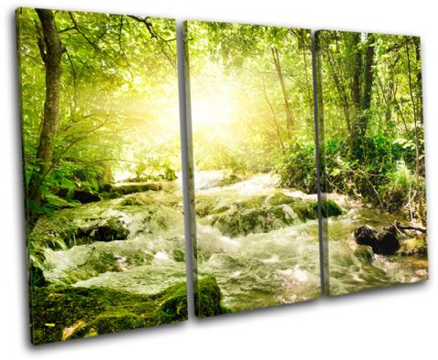 Forest Stream Landscapes - 13-1034(00B)-TR32-LO